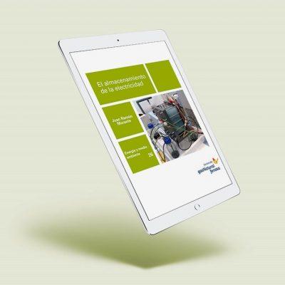 Ebook 'El almacenamiento de la electricidad'